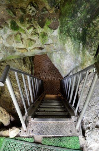 超危険な質志鍾乳洞でコウモリを見た!