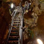 京都で唯一の鍾乳洞は超サバイバル!質志鍾乳洞でコウモリを捉えた!