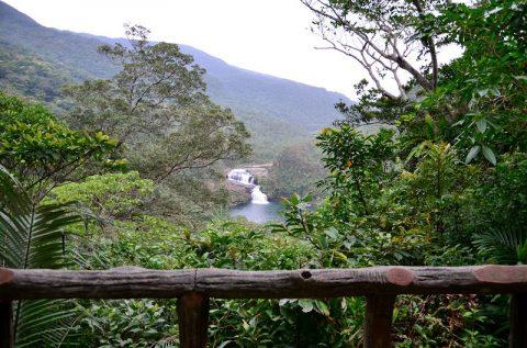 「マリュドゥの滝」「カンビレーの滝」で手軽に味わう秘境はどんなものか?西表島の浦内川観光ツアーに参加
