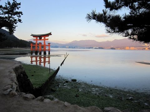 【厳島神社】の大鳥居を独り占め!干潮と満潮の水位の差はこんなにも違う
