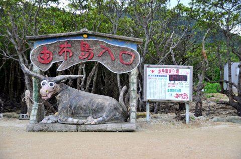 【西表島】水牛車に乗って由布島へ‐植物園で見る黄金のサナギは必見!