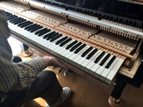 調律師に聞く、ピアノのハンマー交換費用はいくら?