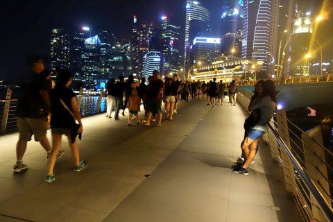 シンガポールの夜景とブリッジ、マーライオンパーク