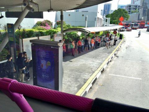 利用価値あり!シンガポールの「バス」乗り方と路線図