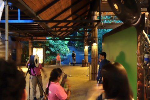 シンガポール「ナイトサファリ」トラム待ちの写真撮影