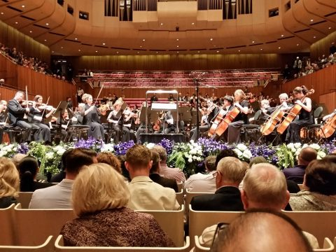 シドニーオペラハウスの眺望