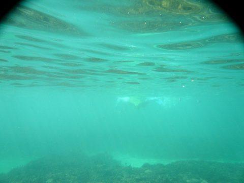 池間島フナクス(池間ブロック)の水質