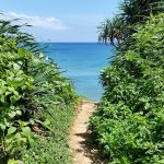 池間島の穴場ビーチ「池間ロープ」へ!サンゴの多い静かな海でシュノーケリング