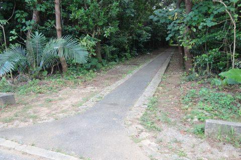 伊良部島/牧山公園の横道