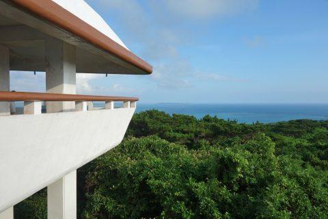 伊良部島/牧山展望台から見る原生林と海