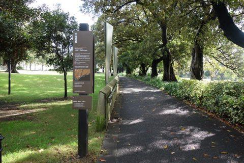 シドニーの公園ドメイン