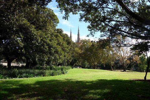 シドニーの公園ドメインから見える教会