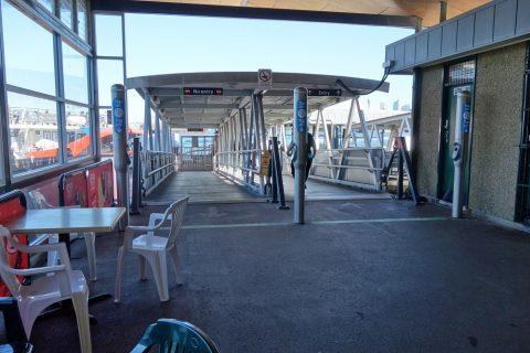 taronga-zooフェリー乗り場