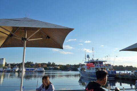 シドニー・フィッシュマーケットテラス席で海鳥の鳴き声