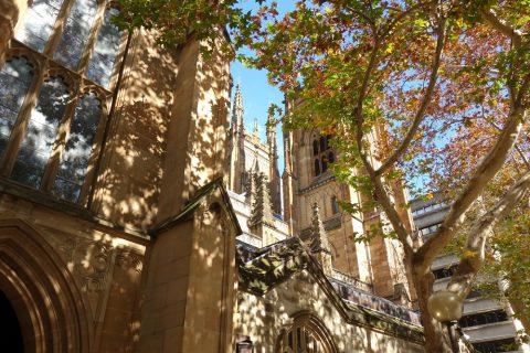 シドニーのSt.アンドリュース大聖堂と紅葉