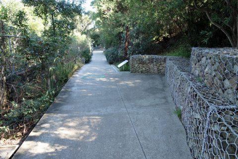 taronga-zooの道