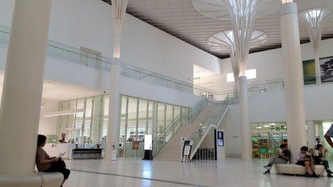 沖縄県立博物館・美術館のエントランスホール