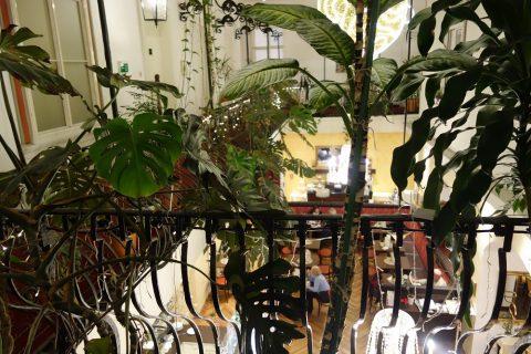 Cafe-Erzherzog-Johann雰囲気の良いカフェ