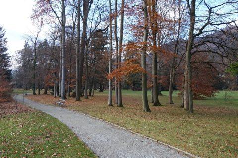Schloss-Eggenberg園庭の小道とベンチ