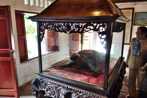 玉山祠の亀