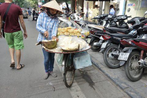 ベトナム行商の果物
