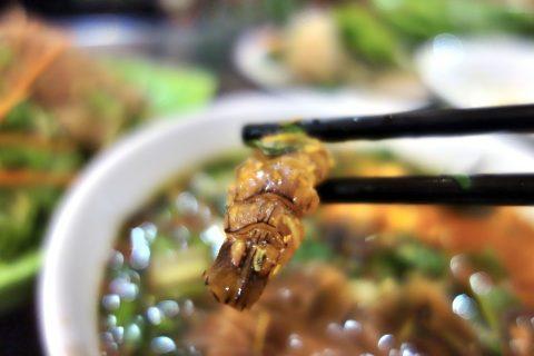 シャコ/バインダークア/quanbacu-haiphong