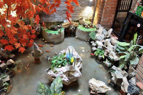 鯉が泳ぐ池/quanbacu-haiphong