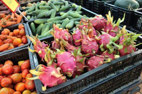 ドラゴンフルーツ/ハノイのスーパー