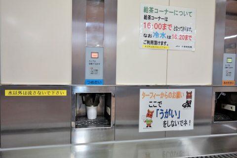 無料のお茶/小倉競馬場