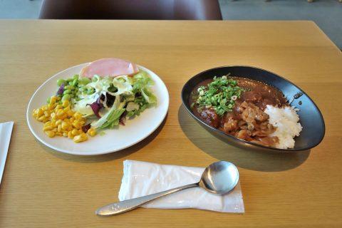 カレーとサラダ/成田空港サクララウンジ