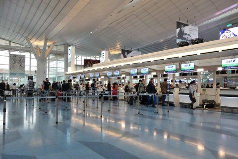 エコノミークラスチェックイン/羽田空港