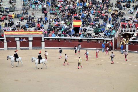 アルグアシル/スペインの闘牛