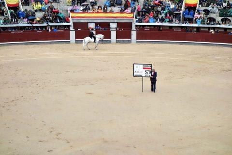 番号プレート/スペインの闘牛