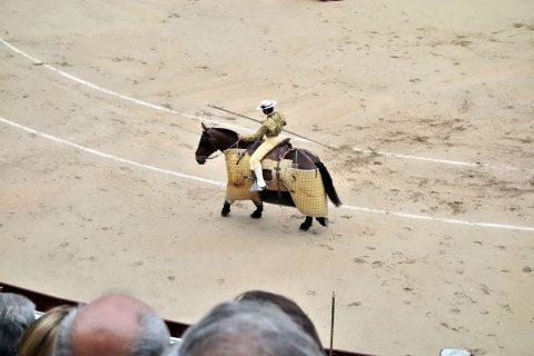 ピカドール/スペインの闘牛