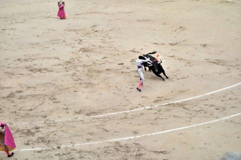 銛をさす/スペインの闘牛