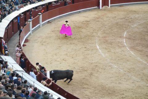 ブルラデーロ/スペインの闘牛