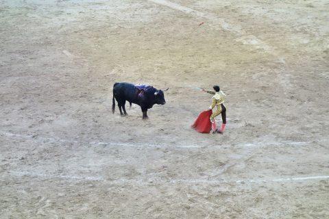 マタドールの短剣/スペインの闘牛