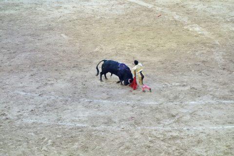 真実の瞬間/スペインの闘牛