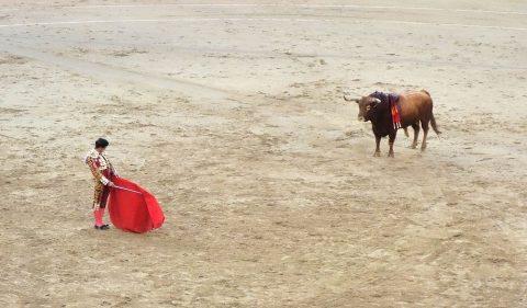 マタドールの所作/スペインの闘牛