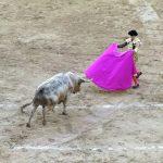 本場の「闘牛」を詳しく!ラス・ベンタス闘牛場/スペイン・マドリード