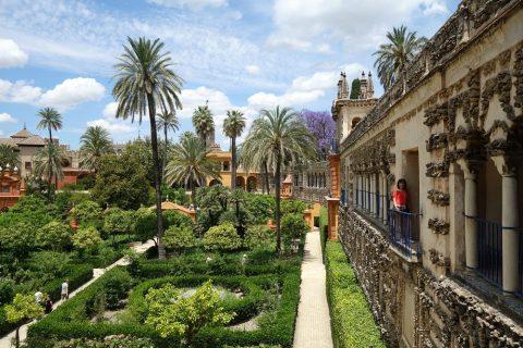 Real-Alcazar-de-Sevilla/城壁から眺める景色