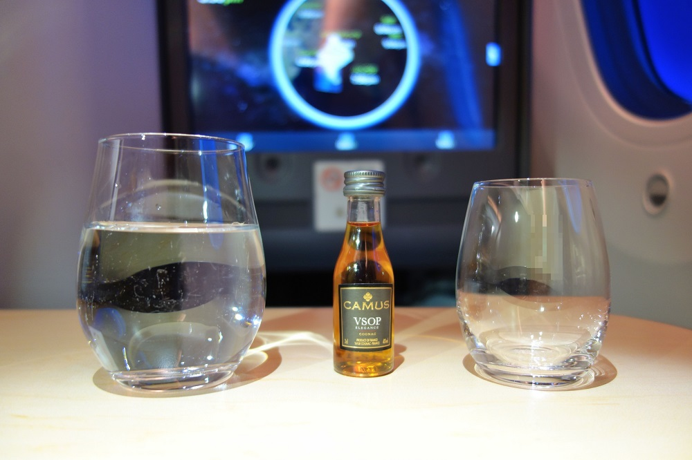 ana-businessclass-haneda-munich (100)