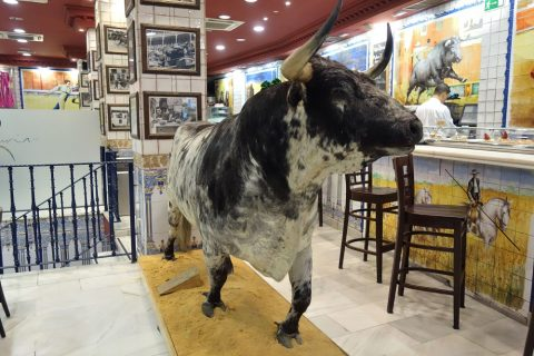 la-taurina-madrid/牛のオブジェ