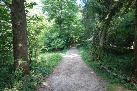 メンヒスベルクの緑道