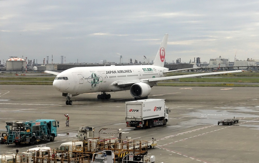 JAL (3)