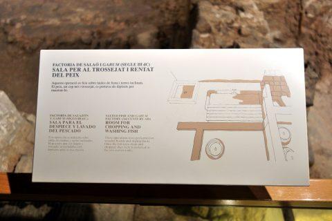 museu-d-historia-de-la-ciutat-barcelona/ガルムの案内
