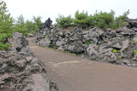 溶岩展望所の道