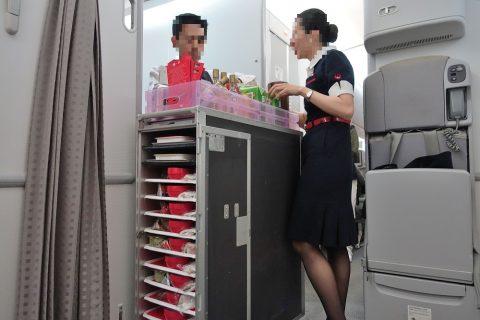 JALのサービス
