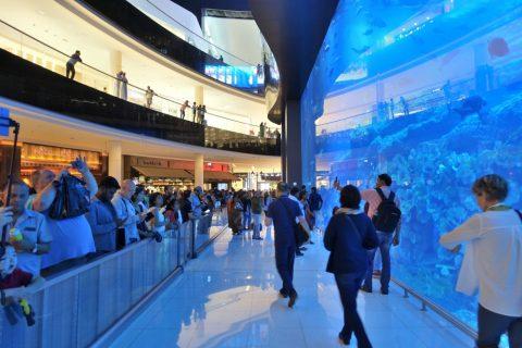 dubai-aquarium/水槽の側