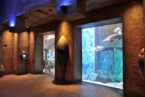 lost-chambers-aquarium/内装